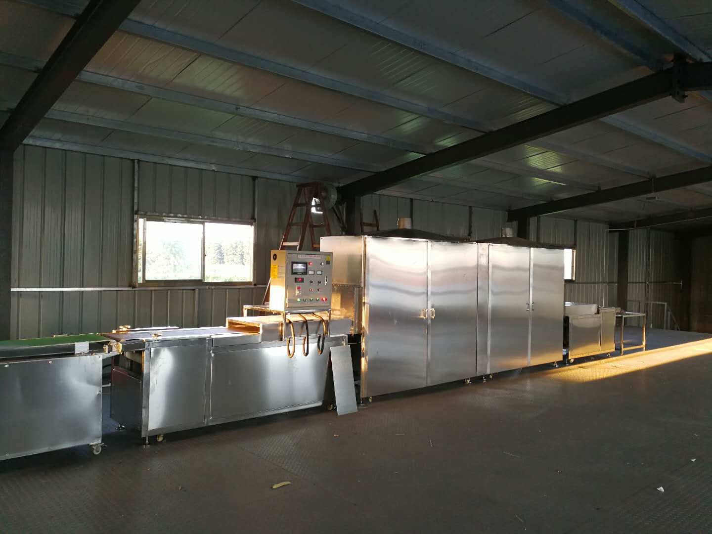 Almond Microwave Tunnel Drying System